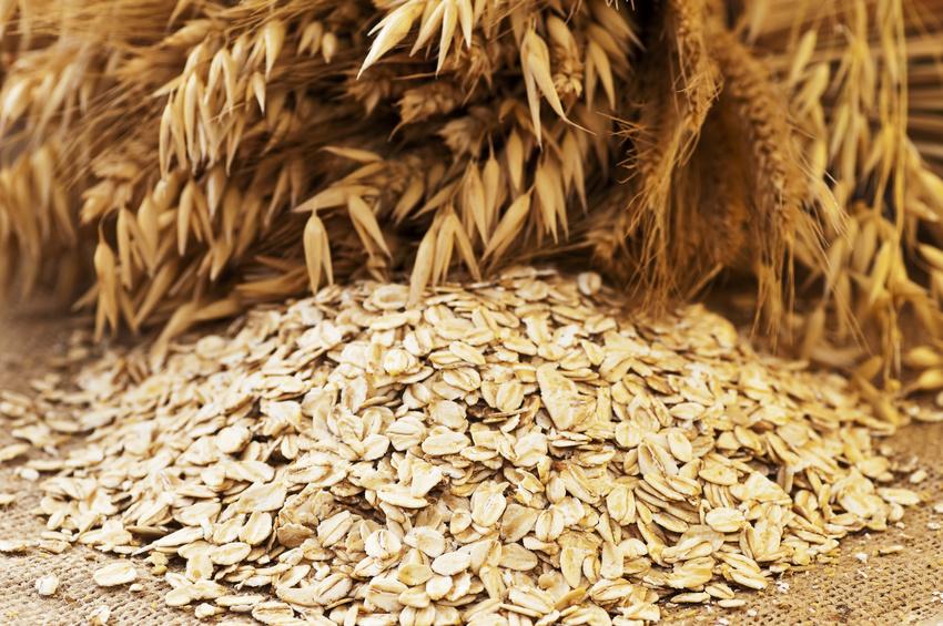Getreideflocken