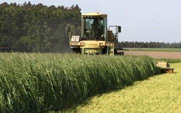 Nordrhein-Westfalen erzielt 2013 ertragreiche Getreideernte 82